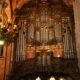 Cicle d'orgue de la Catedral de Barcelona avatar