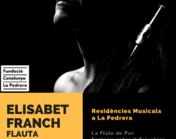 LA FLAUTISTA ELISABET FRANCH AL CANAL 33.